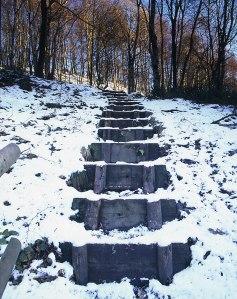 consall wood steps img311